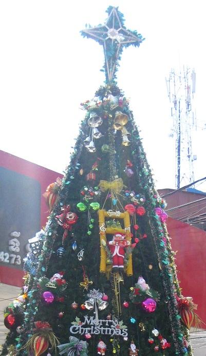 Phnom Penh Christmas Tree