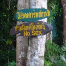 Koh Phangan Temple Sign