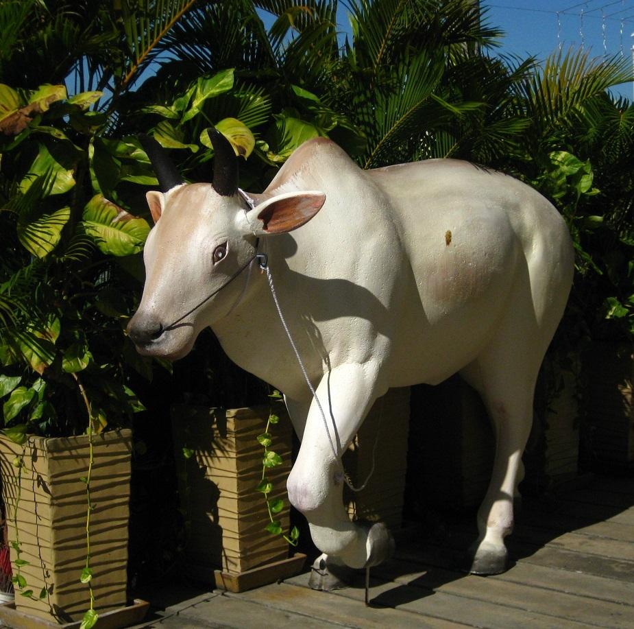 Phnom Penh Styrofoam Cow